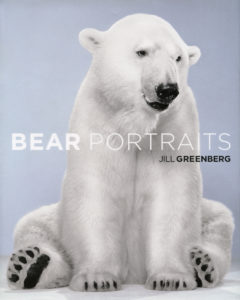Bear Portraits_SM