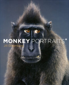 Monkey Portraits 2_SM